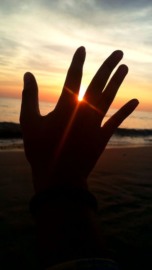 Driven by the sunset, pampered by the rays of light. Sunset Beach Human Hand Nature Sun Sea Sunlight