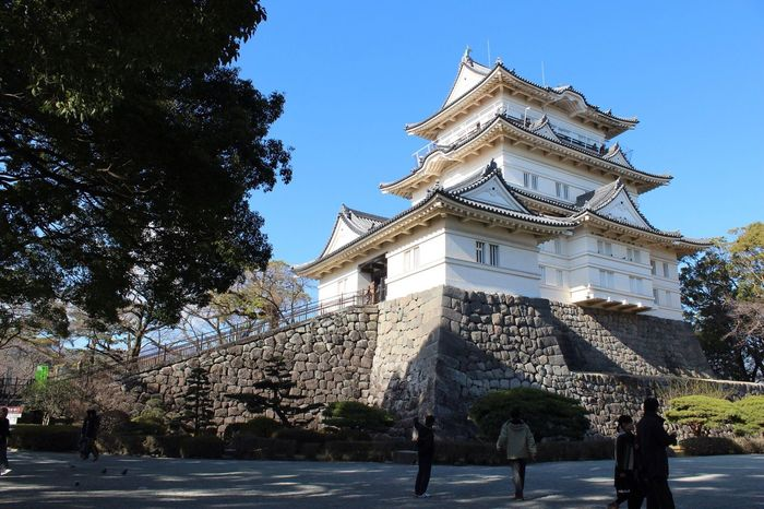 Odawara castle Architecture Built Structure Building Exterior Tree Low Angle View Day History Outdoors Travel Destinations Sky Clear Sky No People Japan Photography Odawara Castle / Japan Odawara Japanese Culture Instagood Instadaily Japanese  Photography Sunset #sun #clouds #skylovers #sky #nature #beautifulinnature #naturalbeauty #photography #landscape Castle Castles View Landscape