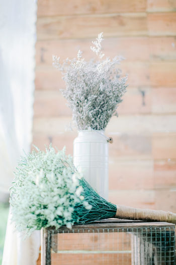 Close-up of white flower pot on potted plant