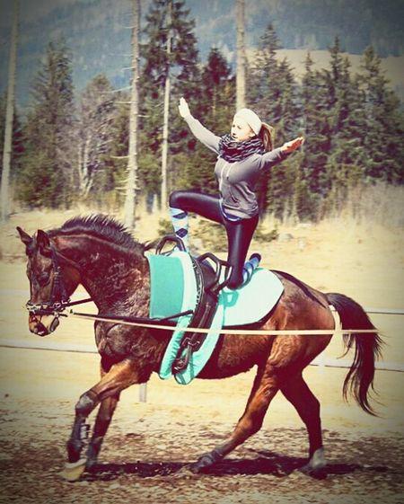My Hobby Voltige Newoneyeem Beautiful Nature Horse Missthismoment Springtime Winterisover Happysunday Voltigieren ~ Turnen zwischen Himmel und Erde 👑💕💪 First Eyeem Photo