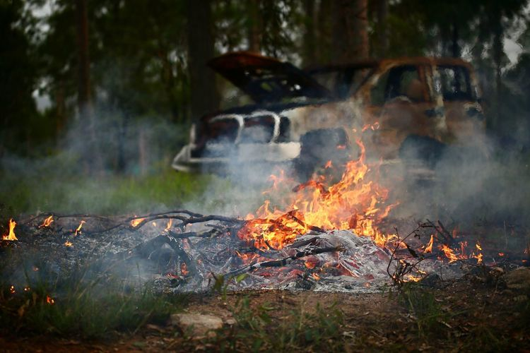 Fire Adventure Burning Camping Close-up Day Flame Forest Heat - Temperature Nature No People Outdoors Smoke - Physical Structure Tree