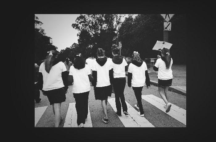 Lupus Walk Friends Model Awareness
