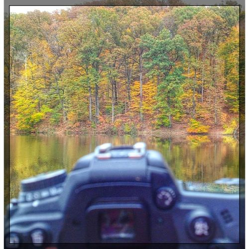 My view today from Jefferson Memorial Forest in Fairdale, Kentucky. Fall Louisville, Kentucky Lake Camera