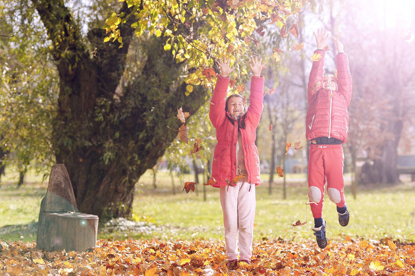 Children throwing leaves in the air. Autumn day. Arms Raised Autumn Autumn Day Boy Children Only Day Foliage Full Length Girl Grass Human Body Part Leaf Leafage Leaves Leisure Activity Nature Outdoors People Sunlight Throwing Leaves Togetherness Tree Two People Women