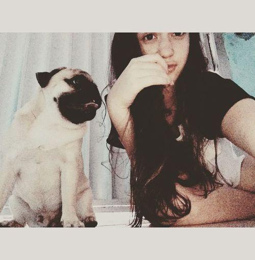 Relaxa a mente. Se não estressa ...💙🌹🙏🏻🍃 My Love My Pug, 💙
