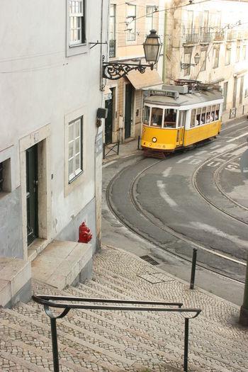 Eléctrico Incidental People Lisboa Lisbon Road Street Tram Transportation Urban Walking Yellowtram Zebra Crossing