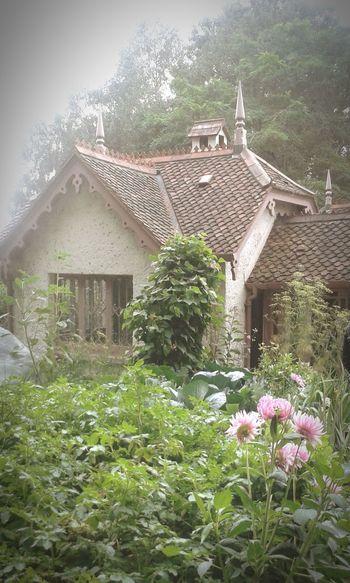 St James Park London  little house