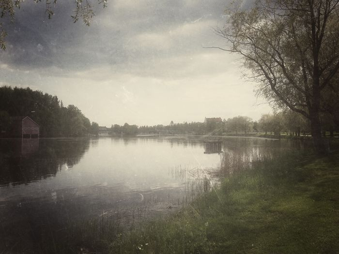 Modern landscape in retro light. Edited on Snapseed. Water Tree Tranquil Scene Reflection Tranquility Scenics Sky Nature Beauty In Nature Calm Day Standing Water Outdoors Edit Collection River Riverside Retro Light Cloud Plant Joensuu Finland Summer Collection