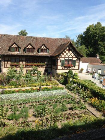 Garden Vegetables Green Architecture