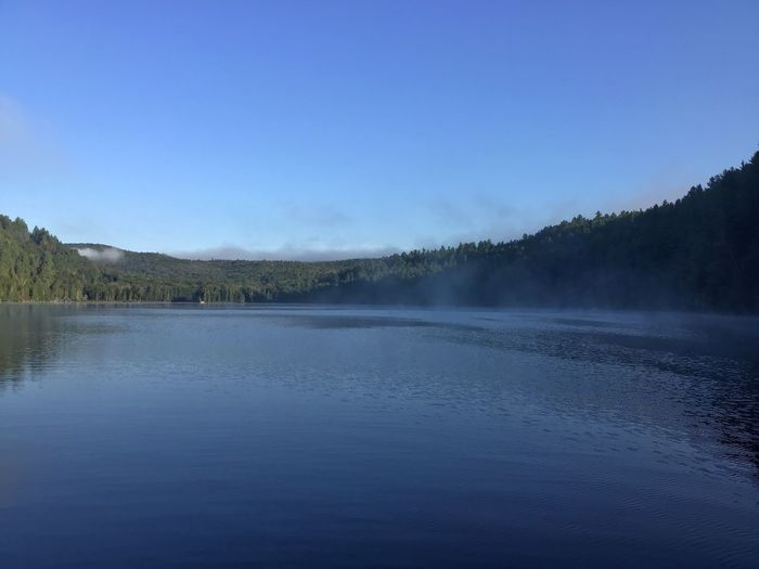 Brume matinale -Morning Mist (Lac Jackson, Mauricie) Mist Misty Morning Water Sky Scenics - Nature Tranquility Tranquil Scene Beauty In Nature Tree Lake Idyllic Outdoors