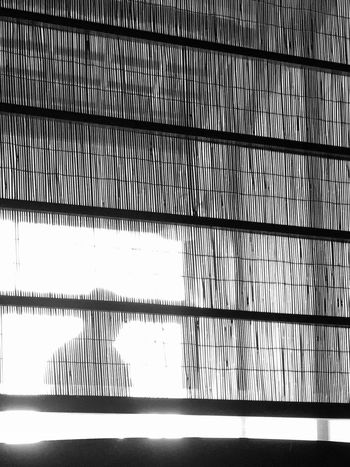 You in the light… Bnw Line And Shape Japanese Style Light And Shadow My Point Of View Eye4photography  EyeEmNewHere EyeEm Best Shots - Black + White Blackandwhite Architecture Pattern Built Structure No People Day Full Frame Indoors  Backgrounds Sunlight Wall - Building Feature Shadow Silhouette Grid Textured  Low Angle View