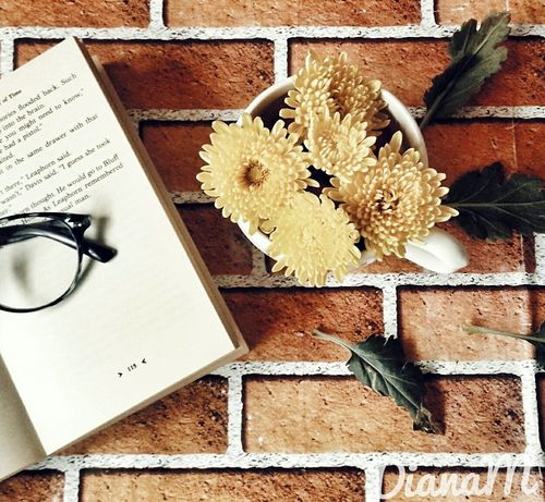 Flatlay Flower Yellow Day Photograph Old-fashioned No People Flatlayoftheday Creativity Flatlay_inspire Flatlaystylist Fragility Freshness Flower Head Petal Close-up Indoors