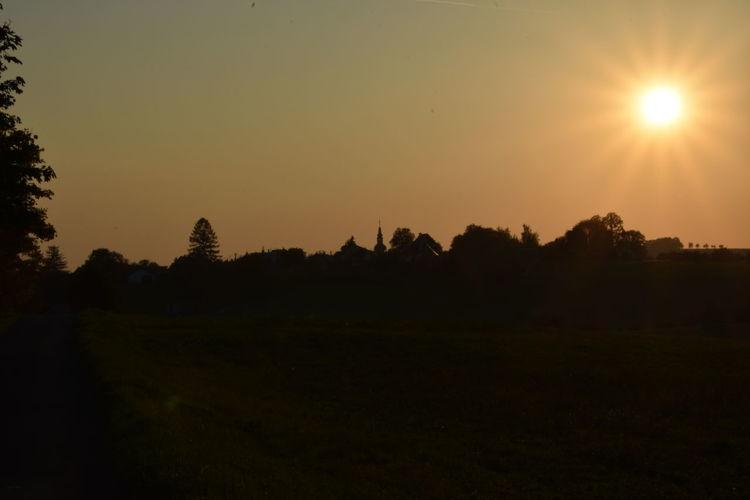 Scenics - Nature Beauty In Nature Tree Sunset No People Outdoors Sun Nature Tranquil Scene Sunlight