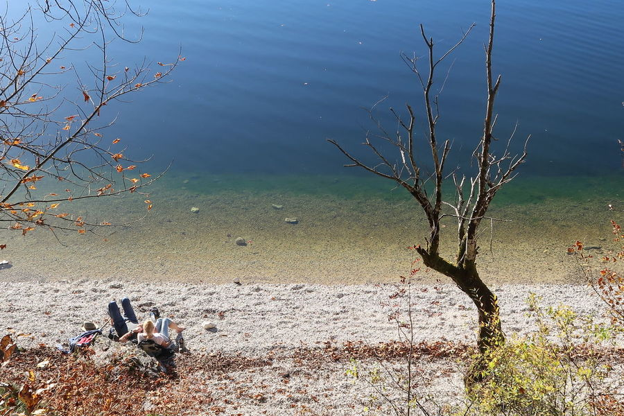 Relaxing on shore Altaussee Austria Autumn Couple Lost In The Landscape Relaxing Bare Tree Beauty In Nature Blue Branch Day Dead Tree Lake Leisure Nature Outdoors Relax Tree Water EyeEmNewHere Perspectives On Nature An Eye For Travel