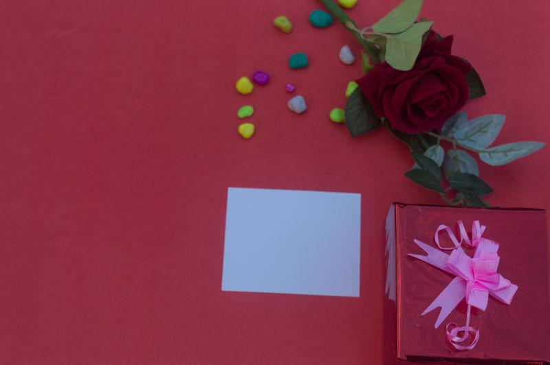 High angle view of rose on red table