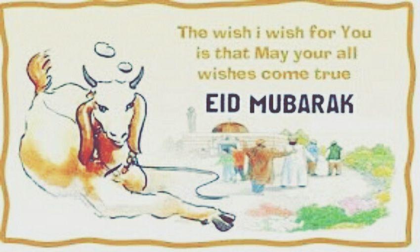 ♧ Happy Eid-Ul-ADHA ♧ ღ.MĎ.ღ Eidmubarak2015 I'm Proud To Be Muslim Chărismătic HuT