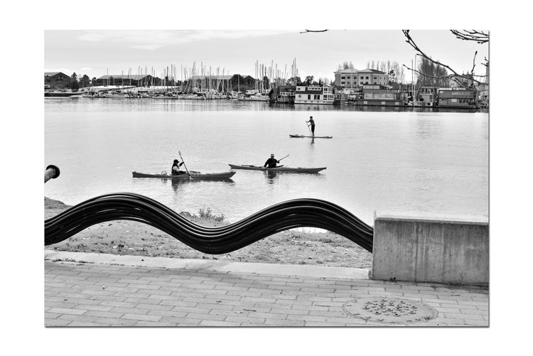 Sporting Day on the Bay 2 Port Of Oakland,Ca. Jack London Square Marina Kayakers Paddle Boarder Water Sports Embarcadero Cove Wave Simulated Barrier Aquatic Sports Alameda Marina Nautical Vessels Moored Masts Houseboats Office Buildings Monochrome_Photography Monochrome Waterfront♥ Black & White Black & White Photography Black And White Black And White Collection  Walkway Tree Branches Reflection Reflections In The Water Calm Shore