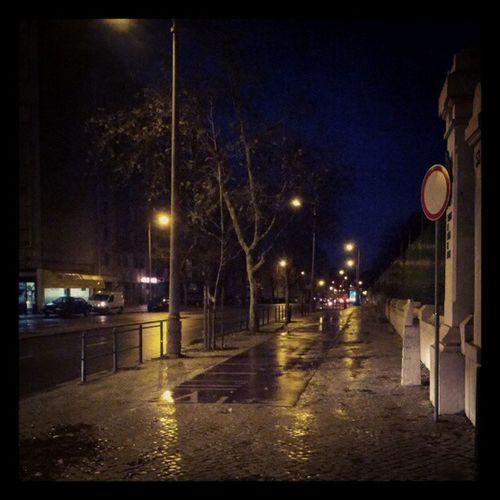 Domingo faz Lisboa começar assim Lisboa Lisbonology Morning