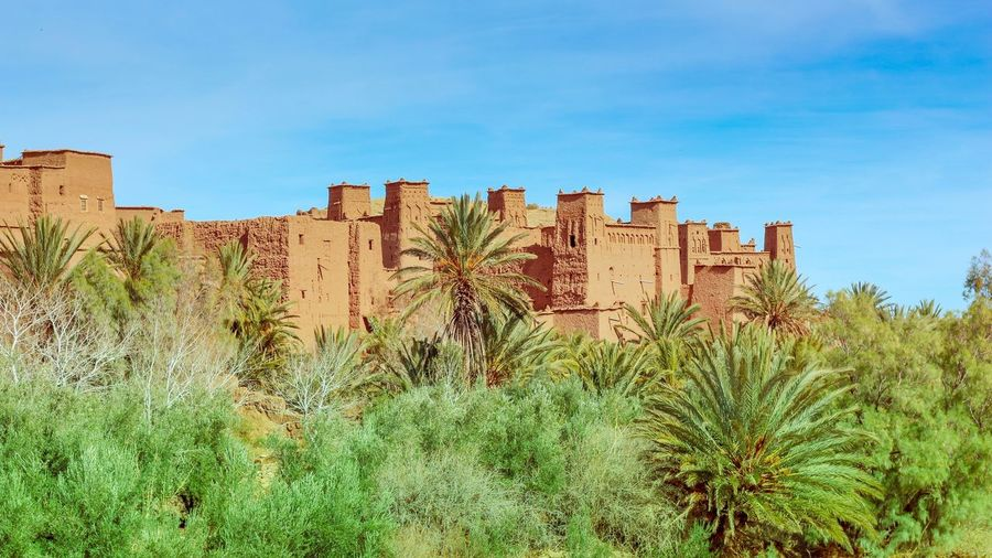 Game Of Thrones Plant Sky Nature Growth Day No People Architecture Blue Built Structure Scenics - Nature Succulent Plant Beauty In Nature Green Color Building Exterior Land Cactus Clear Sky Tranquility