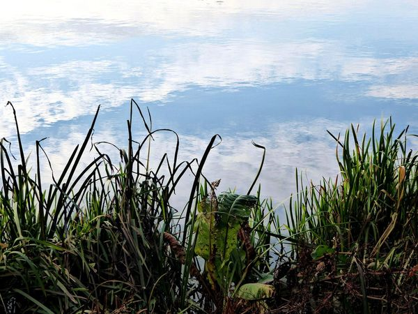 Sky Reflections In The Water Nature Beauty In Nature For My Friends 😍😘🎁 For My Friends That Connect Celebrate The Simple Things Beauty In Nature Waterfront Waterreflections  Tranquility Lake Enjoying The View Favoritelake