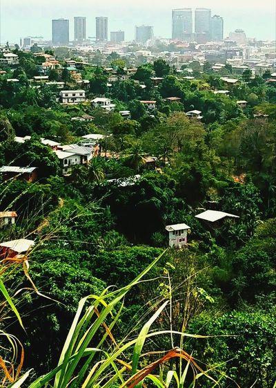 P. O. S. Trinidad Port-Of-Spain Caribbean City Cityscape Urban Skyline Lifeintrini Outdoors City Life Downtown District