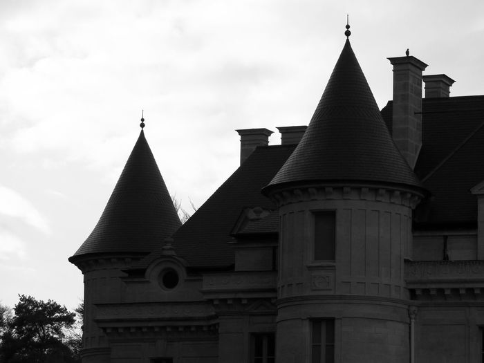 Castle part bnw ( urbanism ) with one black bird on one chimney Castle Part Against. Sky Bnw Bird On Chimney Tops Architecture Black And White