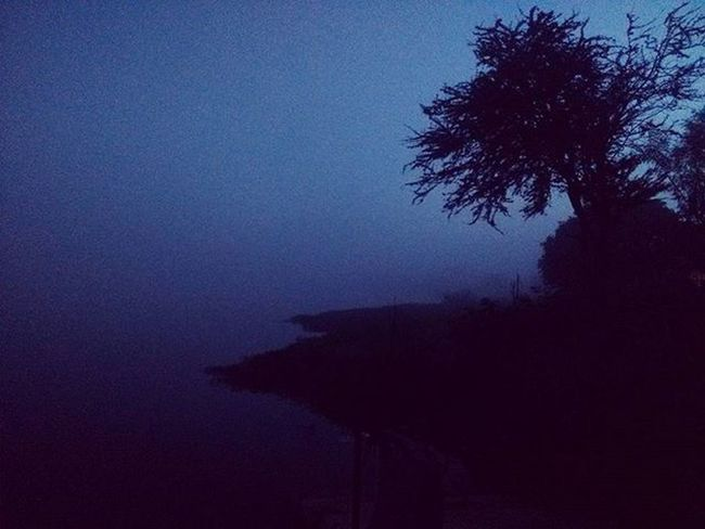 """❄❄❄""""I tried to catch some fog, But I mist""""❄❄❄ Bangalore Myblr Fog November Climate City Early Morning Ride Bike Friends Frnds Mist Beautiful Weather Video Hyperlapse LOL Happy Feel Love Loved Reflection Lake Water scary adventure dew drops island"""