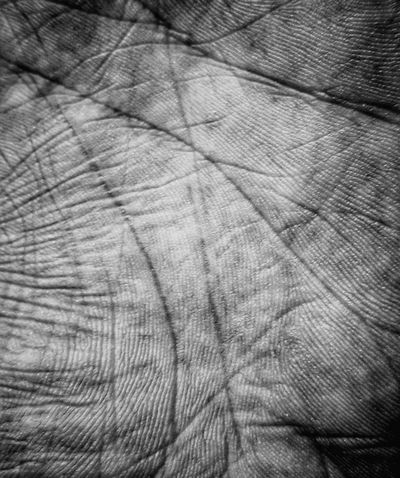 Palm Print Black Countour Textured  Hand EyeEmNewHere Close-up Wood Grain No People Day