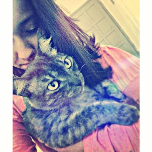 Amor eterno :3 Me And My Cat