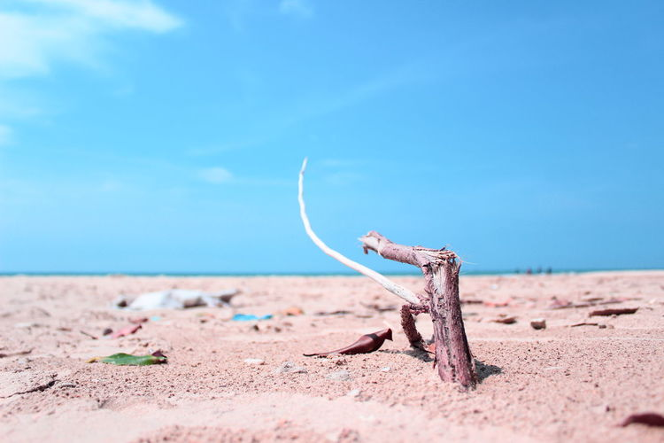 Take care of this universe, earth and sky shed tears if the inn is covered in rubbish Beach Blue Cloud - Sky Day Focus On Foreground Horizon Land Nature No People Outdoors Sand Scenics - Nature Sea Sky Tranquility Water