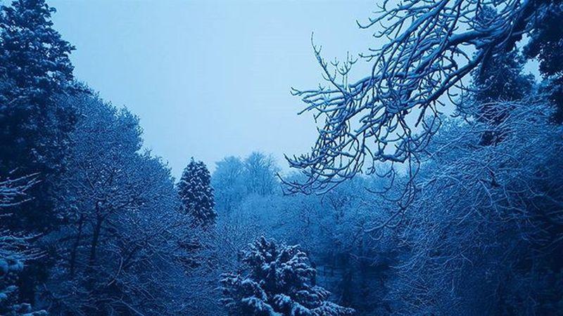 ❄❄❄ Roukenglen Glasgow  Instaglasgow Ig_glasgow Instascotland Insta_Scotland VisitScotland Explorescotland Vscotland VSCO Vscocam Picoftheday Instaoftheday Ig_Scotland IgersScotland Livinginscotland Lifeinscotland Snow