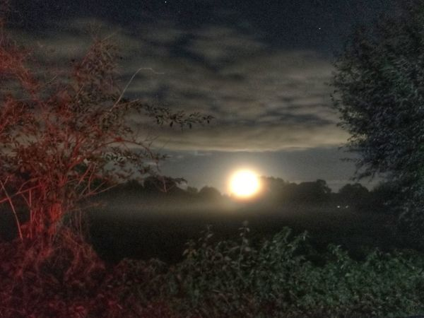 Moonlight Nature Moonlit Moon Shots Moonrise Moonshine Moon And Clouds Moon_collection Moon