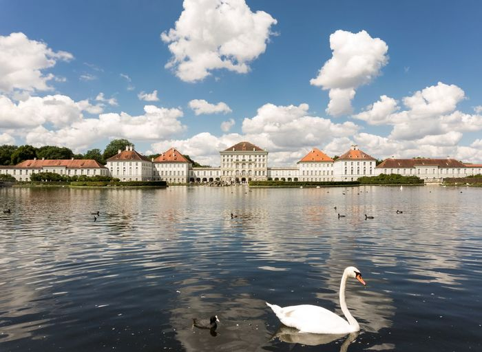 NYMPHENBURG Schloss Water Architecture Built Structure Cloud - Sky Swan Sky Lake Day Building Exterior Animals In The Wild Animal Themes Nature No People Bird Outdoors Swimming Beauty In Nature Tree