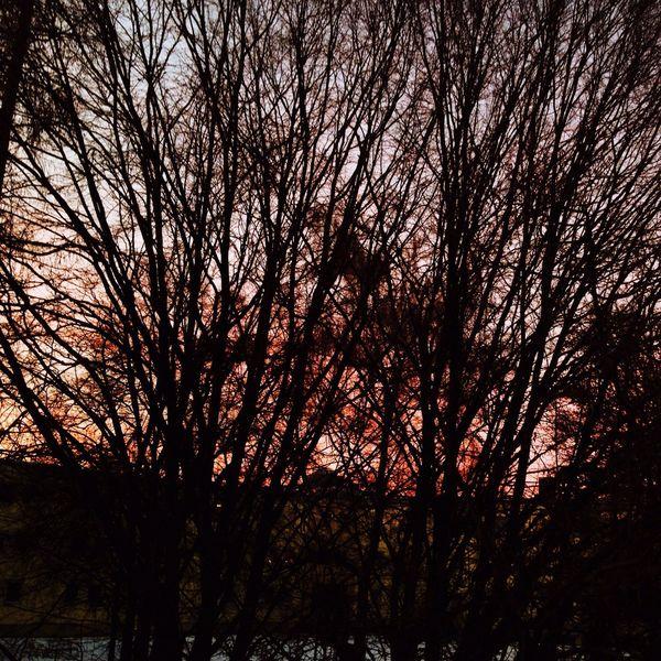 Enjoying Life Sunset Silhouettes Open Edit @ Erding