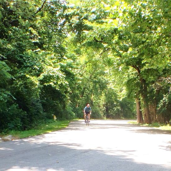 Coming up to the top. Life On 2 Wheels Angry Cyclist Bicycle Club No F-ing Cars Single For Life