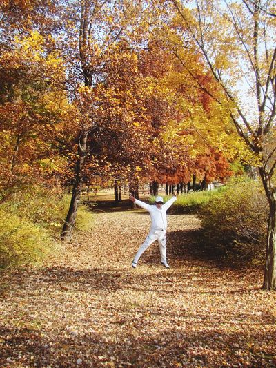 Enjoy the beautiful fall leaves before winter comes!