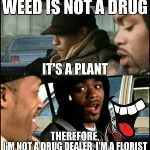 Weed How High  Method Man Redman