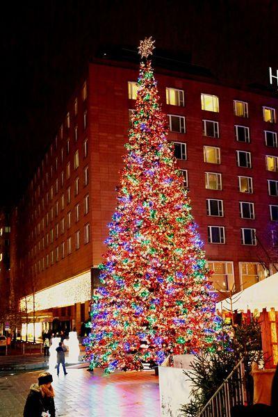 Christmas Christmas Tree Chistmas Lights Die Radikalen Foto Hools Tadaa Community My Fuckin Berlin Light Up Your Life Lights Streetphotography Berliner Lichter
