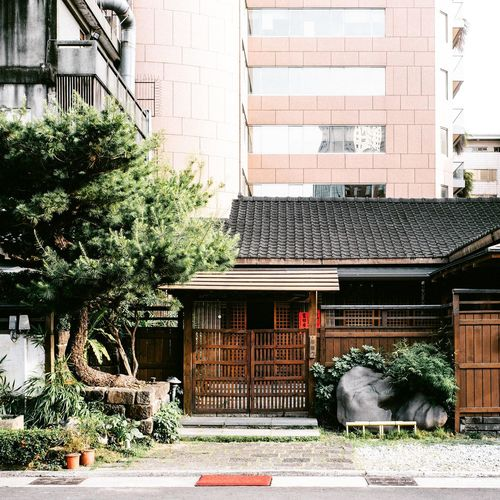 Tree City Architecture Building Exterior Built Structure