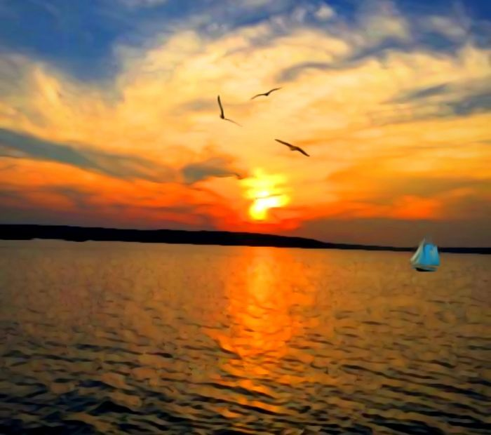 Horizon Over Water Sailing Boat Beauty In Nature Painted Nature King For A Day Remember Summer  Relaxing Tranquility Sea And Sky Colors Of Summer Sunsetting On Water Sunset Sea Nature Sky Flying Water Bird The Great Outdoors - 2018 EyeEm Awards The Creative - 2018 EyeEm Awards