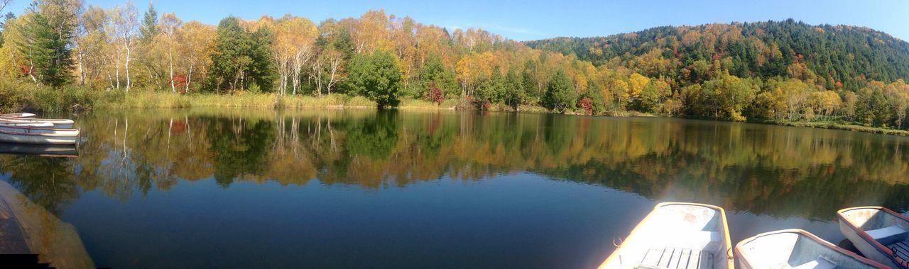 信州 志賀高原 木戸池のボート🚣乗り場から Panorama 写真になります🍁 紅葉 も 晴れた空に映えます✨ Park_japan Japan Beautiful Day Lake Autumn Leaves Amateurphotography 山ノ内町