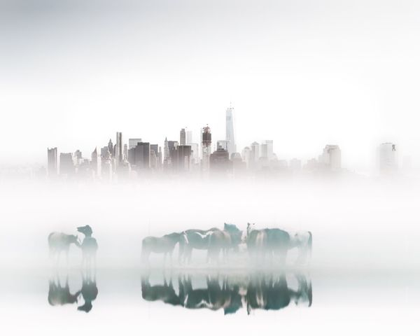 Skyscraper Architecture Outdoors No People Growth Reflection Water Fog Foggy Mist white Landscape Nature Horse Photography  Beauty In Nature