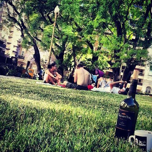 Un vinito en el parque Recoleta Wine Trumpeter ElPadrino