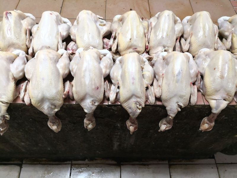 Chicken Whole Chicken Halal Chicken Raw Chicken Uncooked EyeEm Selects Business Finance And Industry Raw Food Food And Drink