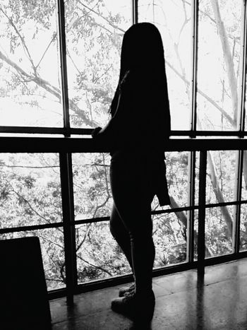Myfriend Window Window Standing Day Indoors  One Person Full Length Silhouette Tree People Adult Adults Only Nature
