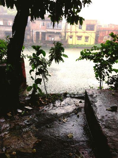 Summer Rain Monsoon In India