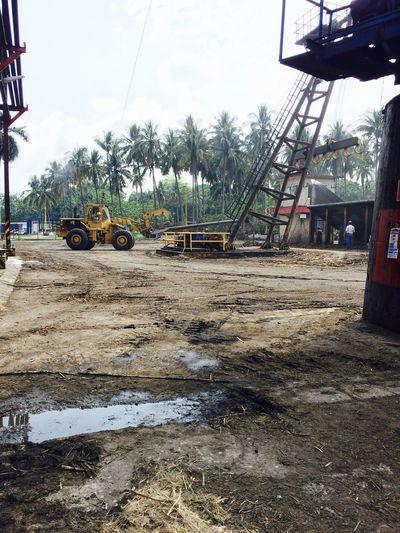 Working Hard Industrial Sugar Mill