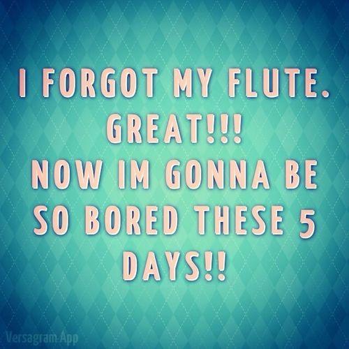 Need My Flute