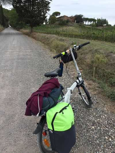 Lost In The Landscape Bicycle Rear View Backpack Transportation Adventure Lifestyles Leisure Activity Road Outdoors Healthy Lifestyle Sport Nature Woman My Bicycle My Bike Be. Ready.