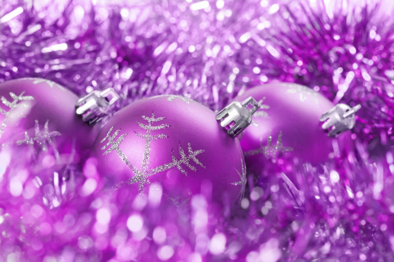 Close-up of christmas ornaments on purple flowering plant